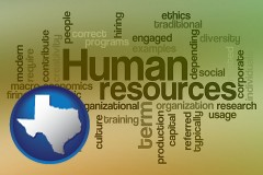 texas map icon and human resources concepts
