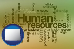 wyoming map icon and human resources concepts